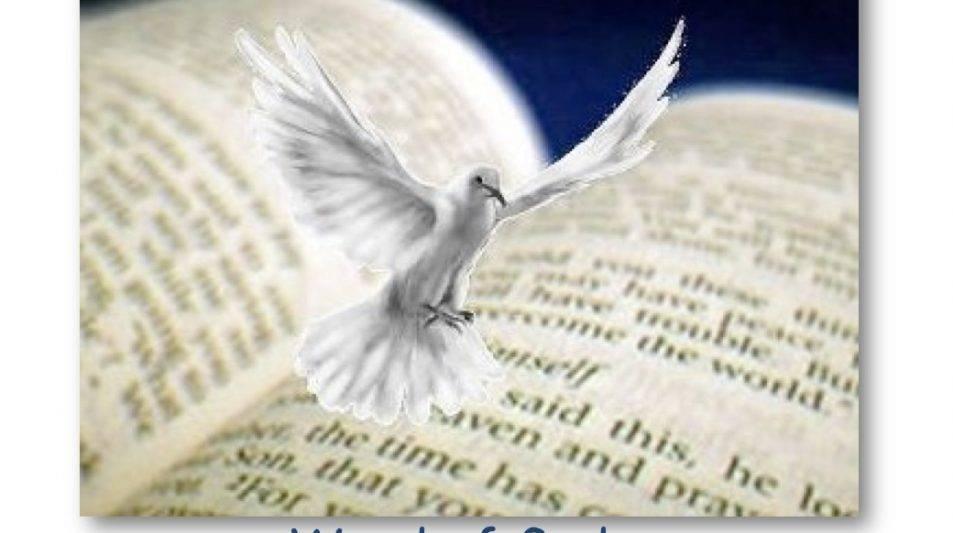 Journey of Faith - talks recommence